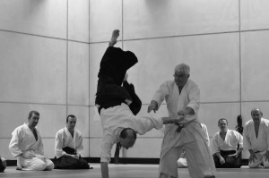 December 2018 Aikido Update
