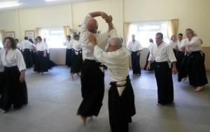 2019 Aikido Spring Seminar