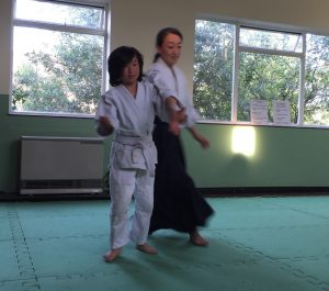 Ki Aikido Testimonial