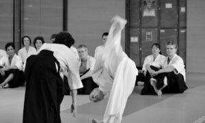 September 2019 Aikido Update