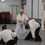 2017 Toronto Aikido course