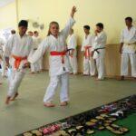 Junior Aikido Experience