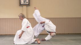 May 2020 Aikido News