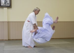 January 2018 Aikido Update