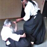 2018 Aikido Summer Seminar