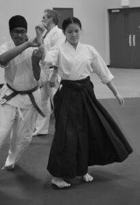 June 2019 Aikido Update