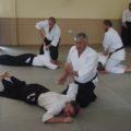 2019 Aikido Summer Seminar