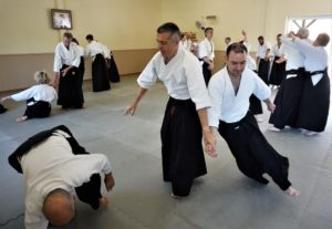 February 2020 Aikido Update
