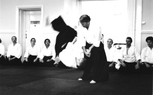 July 2018 Aikido Update
